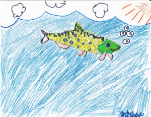 © Addie Meyer-3rd Grade North Hudson Elementary